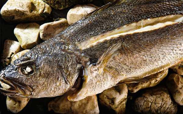 Riba pečena na morskom kamenju i moru