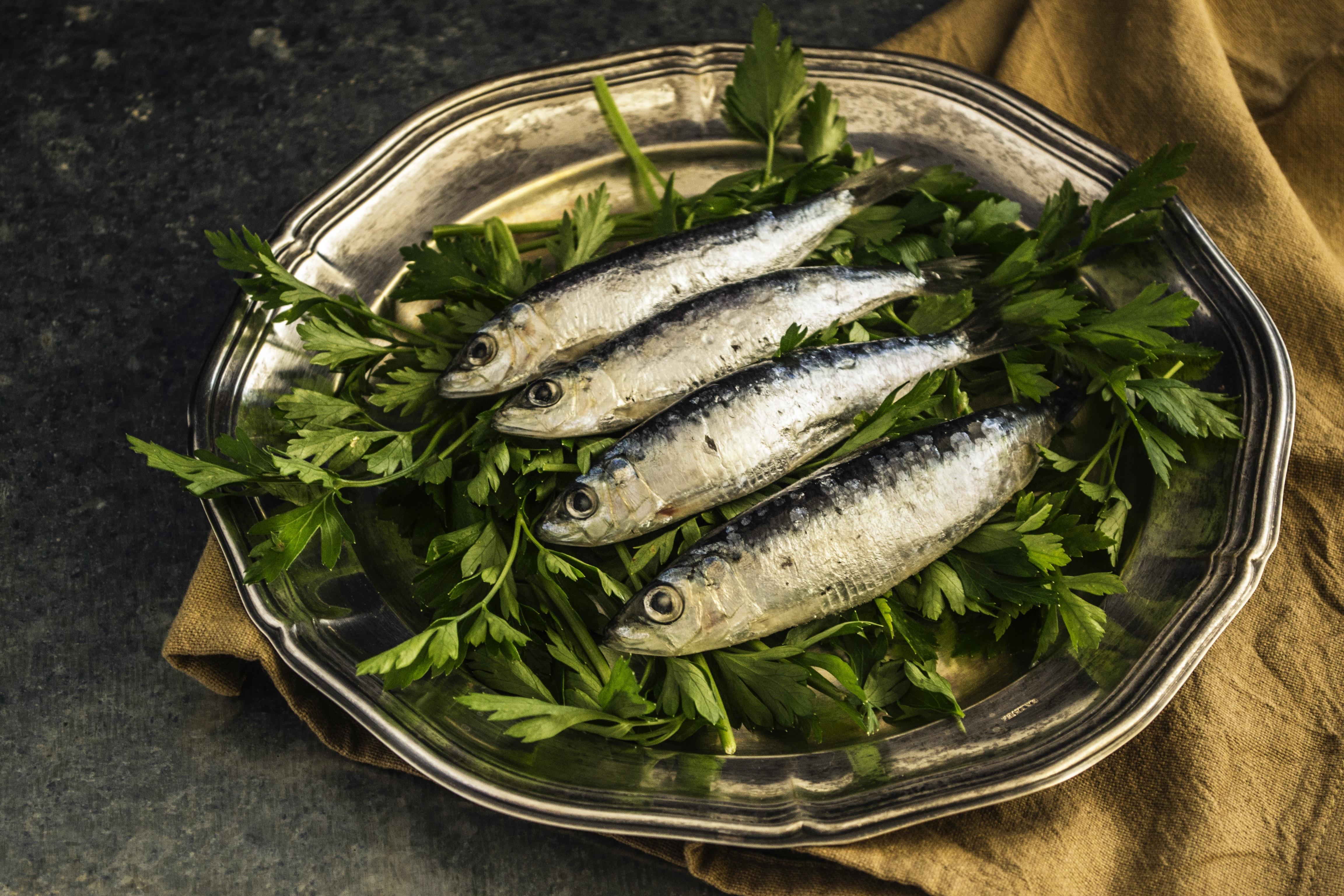 Sitna plava riba najbolji je mogući izbor za ručak