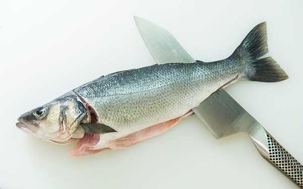 Proces čišćenja i čuvanja ribe, izrade fileta, te skidanje kože