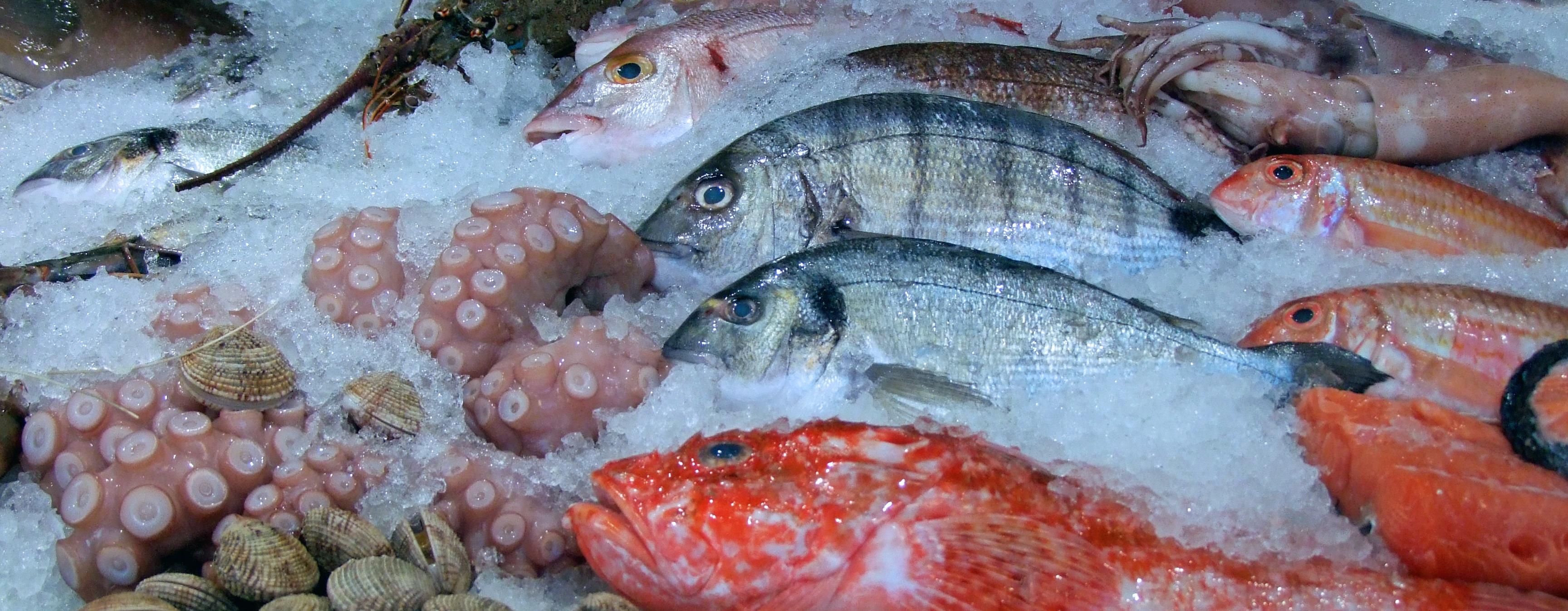 Riba u prehrani