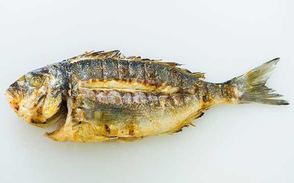 Riba sa žara
