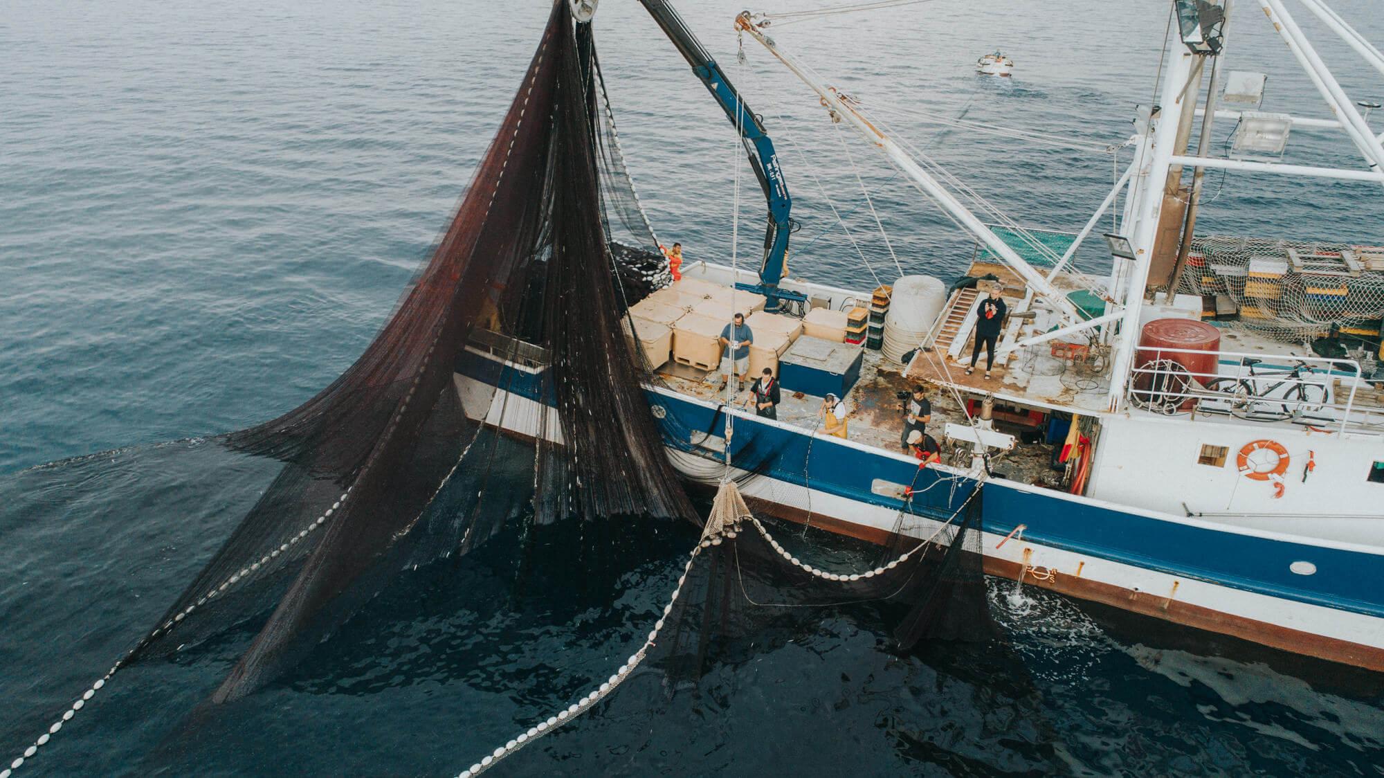 Što je ribarstvo – globalna i lokalna važnost ribolova i akvakulture