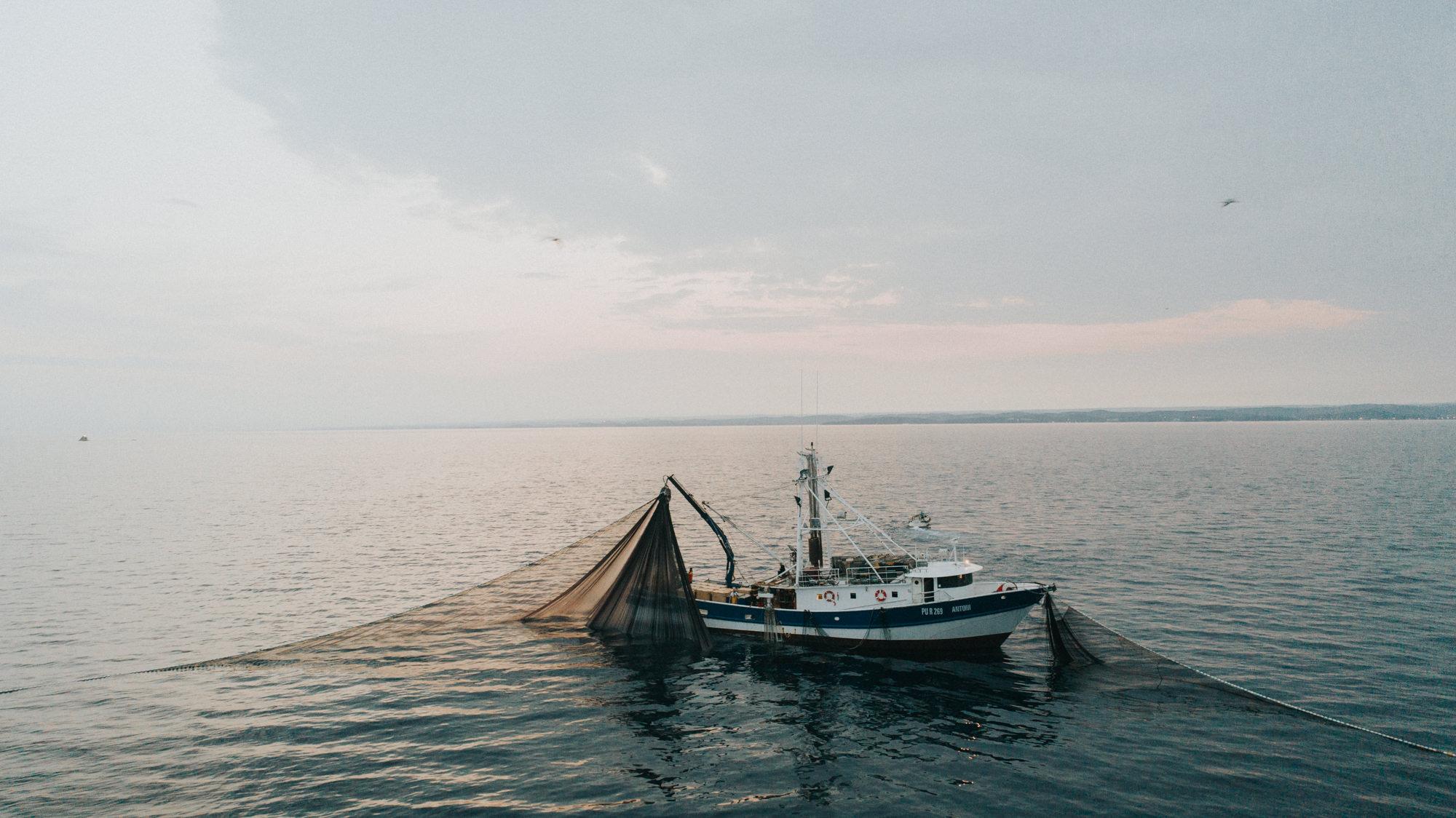 Utjecaj koronavirusa na ribarstvo u Istri