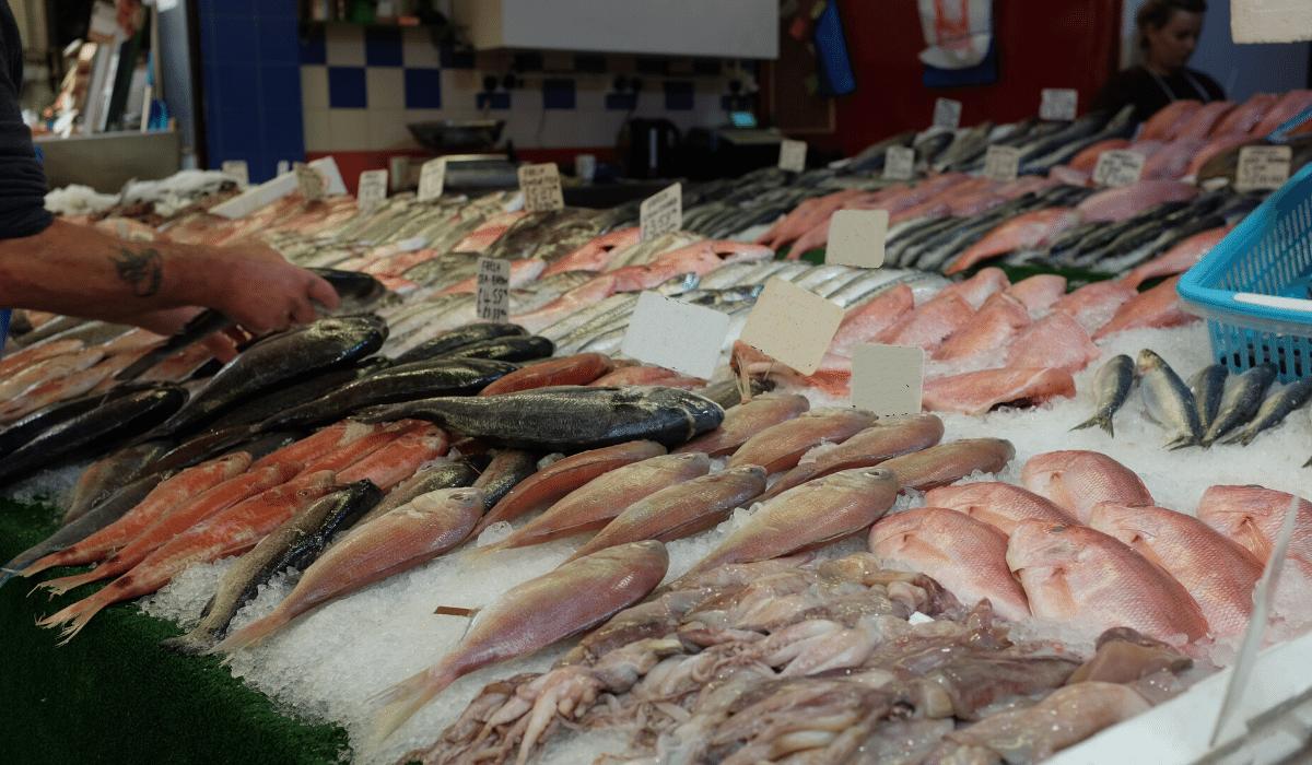 Svježa riba ponovno dostupna na tržnicama