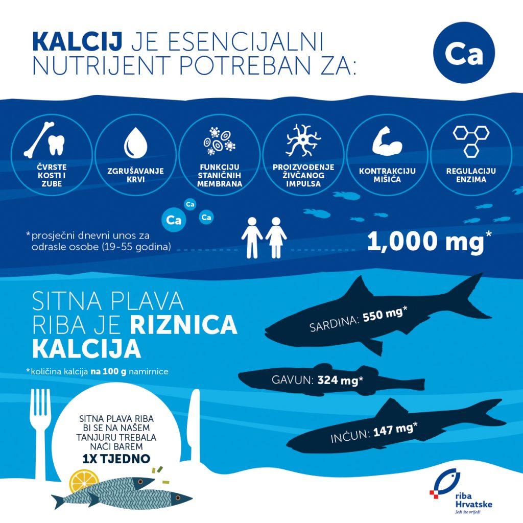 Sitna plava riba kao izvor kalcija