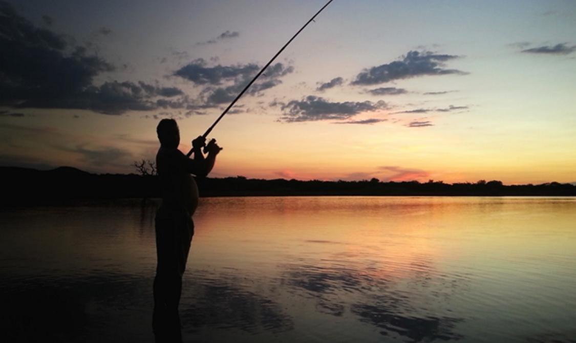 Udio i struktura ulova športskih ribiča prema županijama na ribolovnom području Sava