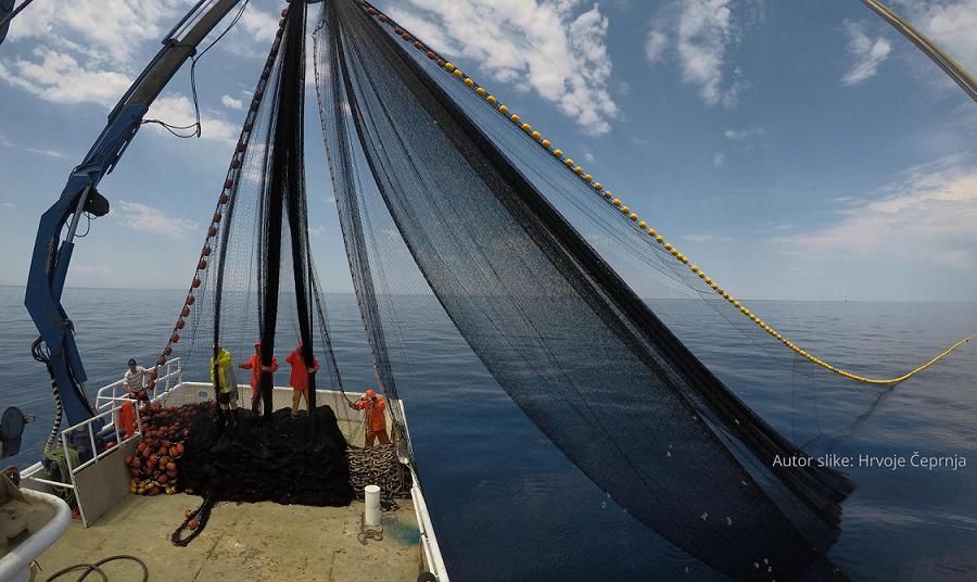 Tunolov u službi akvakulture temeljenoj na ulovu