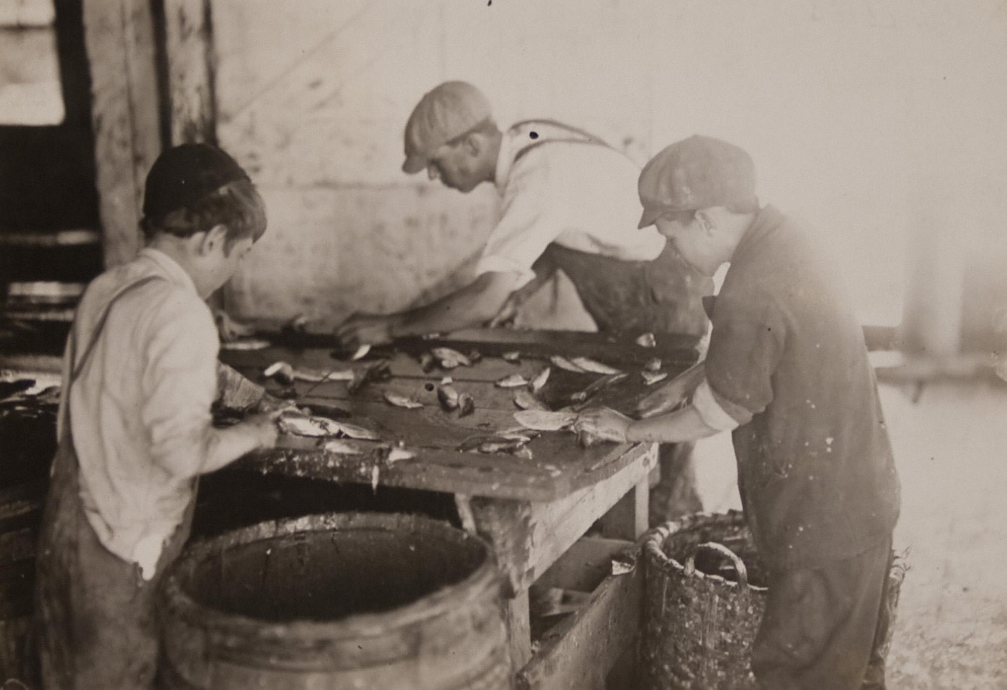 Komemoracija industrijske baštine – povijest konzerviranja ribe na Jadranu